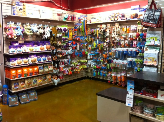 Global Pet Foods Toronto Inside the Store - Lower Jarvis